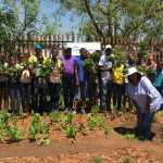 The MMC for Community and Social services, Ntsiki Mokhoto, helping Balebogeng Higher Primary to harvest. 2 JPG_resized