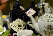 hendricks-gin-