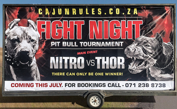The-NSPCA-'Dog-Fight'-campaign-from-Grey-South-Africa