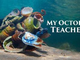 My-Octopus-Teacher-Reuters